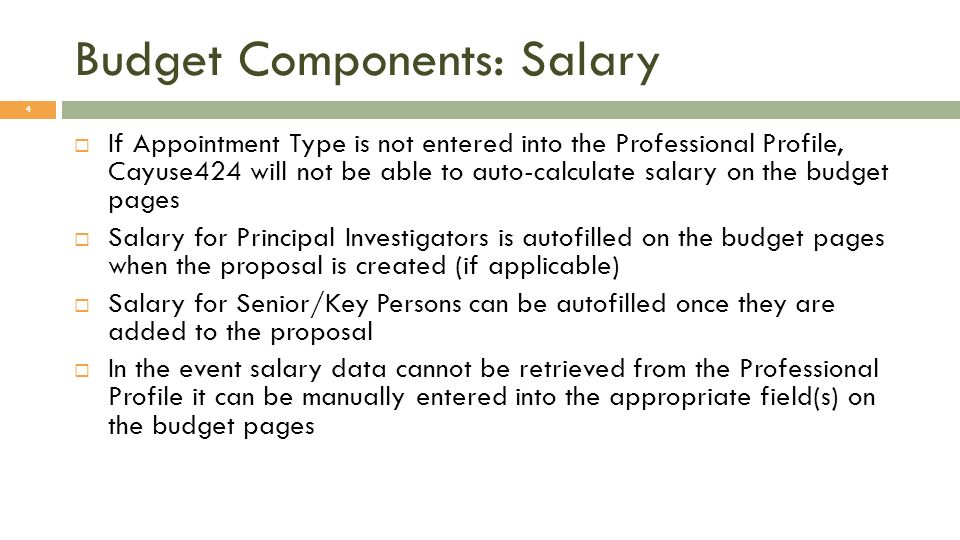 Budget Components: Salary