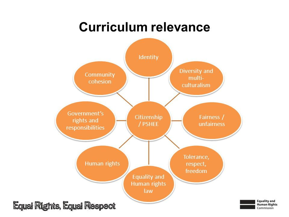 Curriculum relevance Citizenship / PSHEE Identity