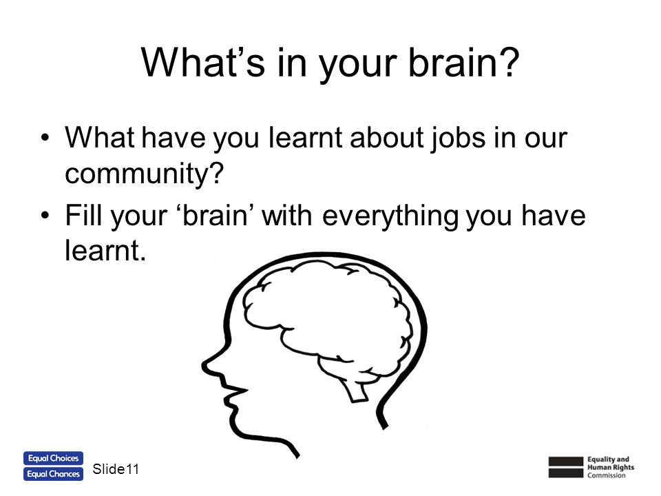 What's in your brain What have you learnt about jobs in our community Fill your 'brain' with everything you have learnt.