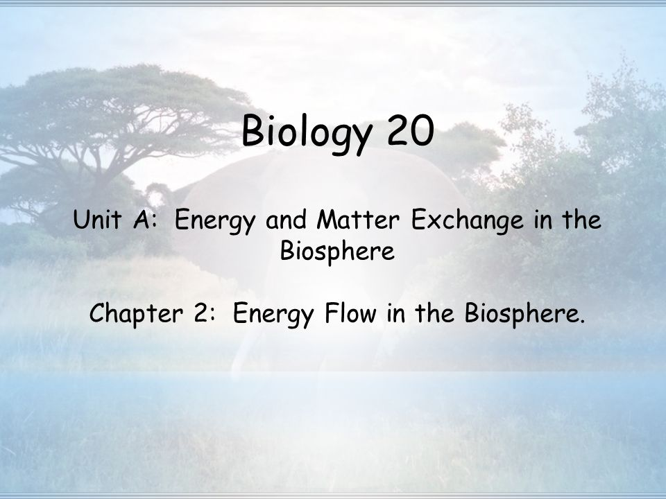 chapter 1 organisms in the biosphere Chapter 56 the biosphere the study of the interactions between organisms and their environment ecology organisms all living things studied at many levels.