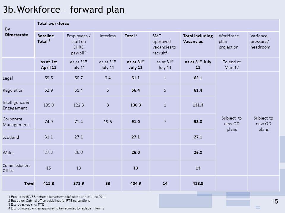 3b.Workforce – forward plan