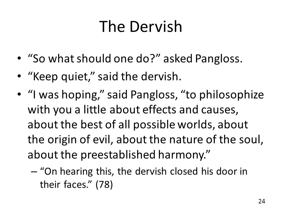 The Dervish So what should one do asked Pangloss.