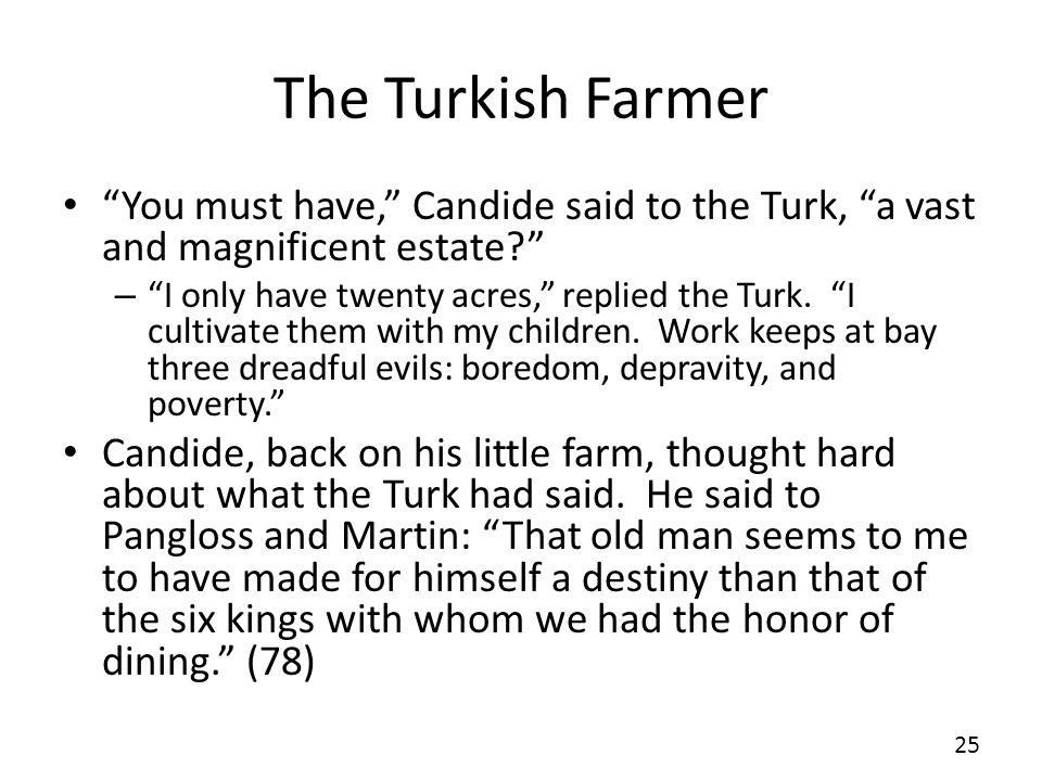 The Turkish Farmer You must have, Candide said to the Turk, a vast and magnificent estate