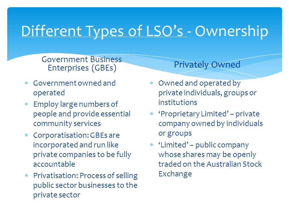 Different types of business ownership s Term paper Sample