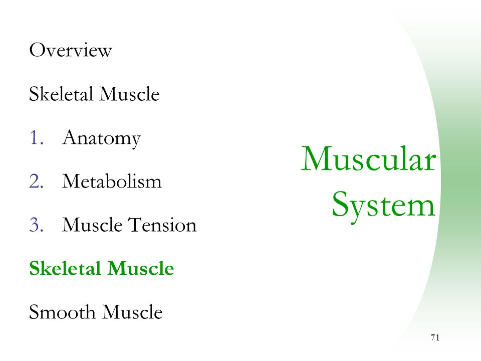 muscular system muscle metabolism Study chapter 2: fuel for exercise: bioenergetics and muscle metabolism  flashcards  what are the essential characteristics of the atp-pcr system   allows muscles to contract when oxygen is limited (not exercise) permits  shorter-term,.