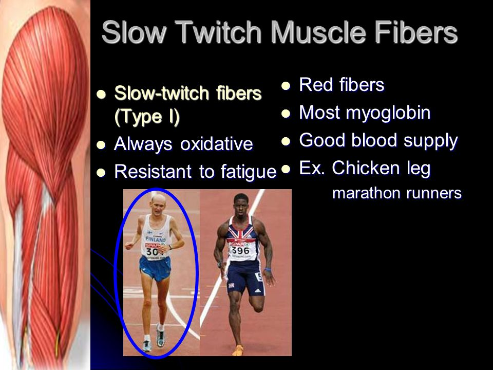 how to work fast twitch muscles