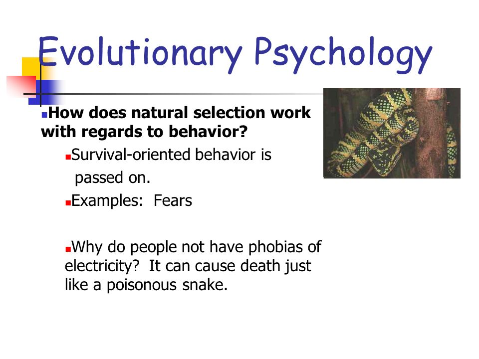 NATURE VS NURTURE Ppt Download - 23 examples natural selection work