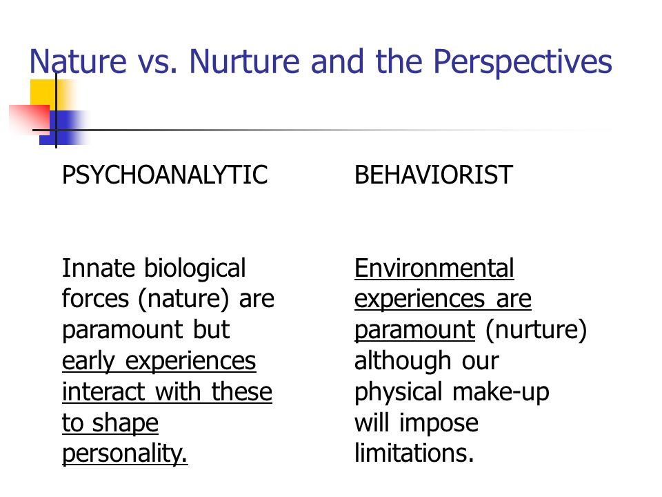Nature versus nurture which determines personality essay