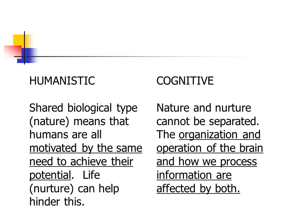 nature and nurture debabe essay
