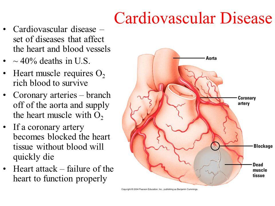 Cardiovascular Disease Diagram Wiring Diagram
