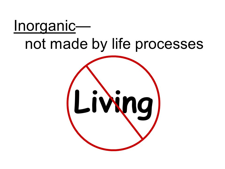 Inorganic— not made by life processes Living