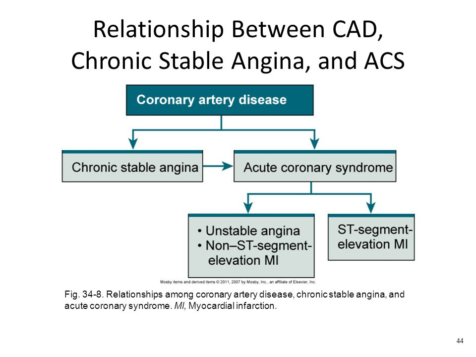 relationship between coronary artery disease and diabetes