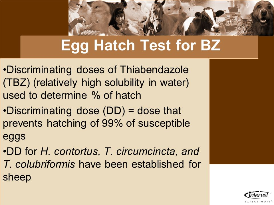 Egg Hatch Test for BZDiscriminating doses of Thiabendazole (TBZ) (relatively high solubility in water) used to determine % of hatch.