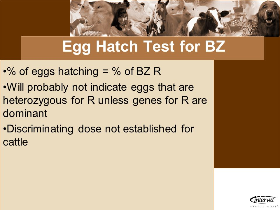 Egg Hatch Test for BZ % of eggs hatching = % of BZ R