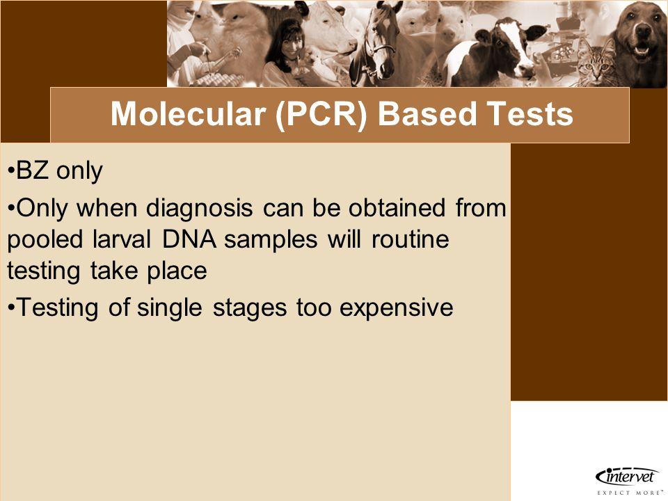Molecular (PCR) Based Tests