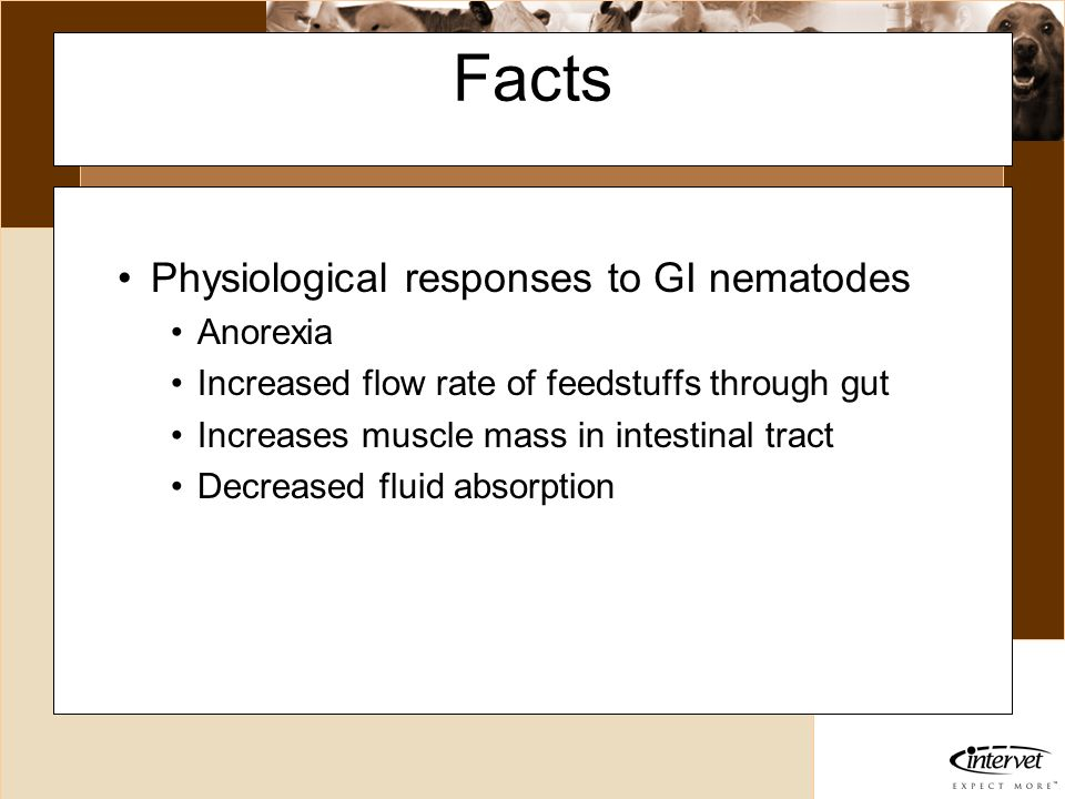 Facts Physiological responses to GI nematodes Anorexia
