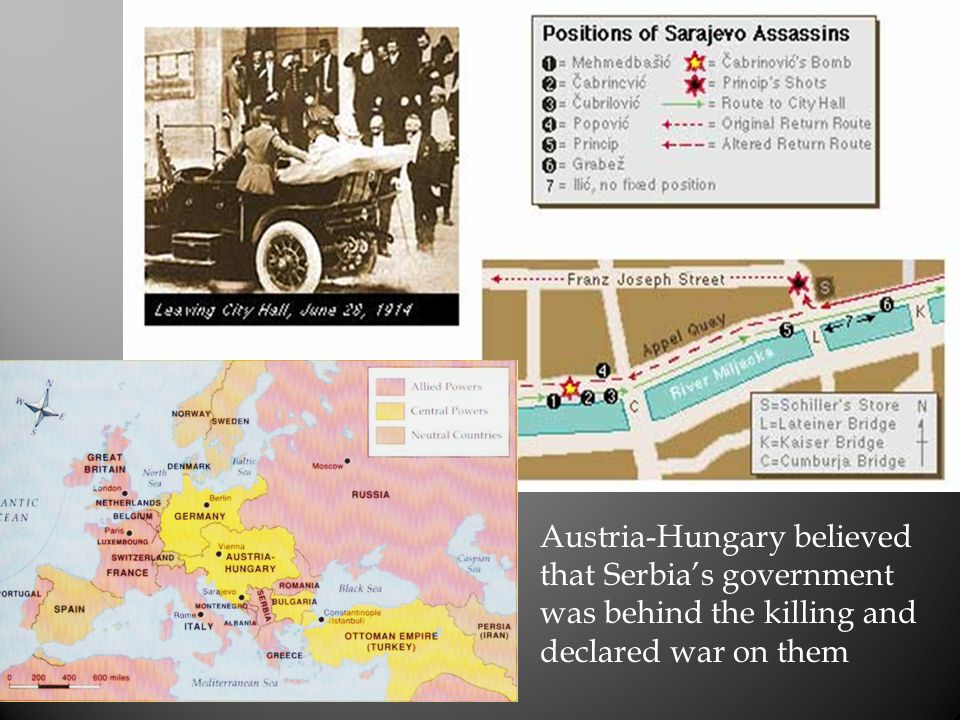 Austria-Hungary believed that Serbia's government was behind the killing and declared war on them