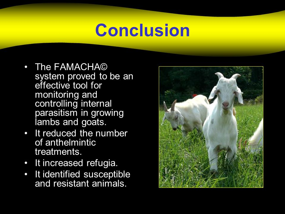 Conclusion The FAMACHA© system proved to be an effective tool for monitoring and controlling internal parasitism in growing lambs and goats.