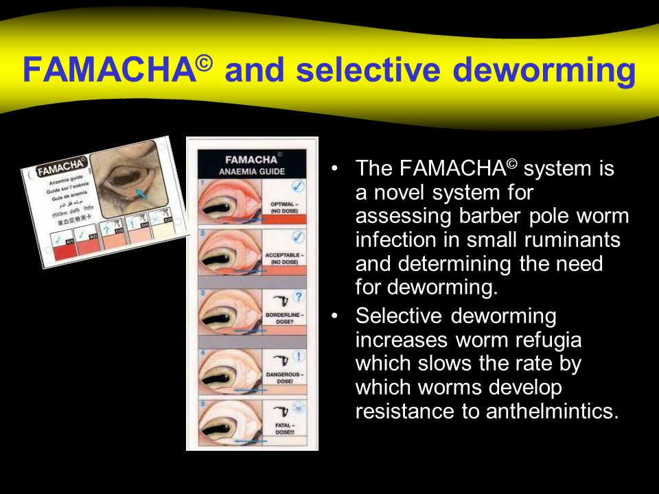 FAMACHA© and selective deworming