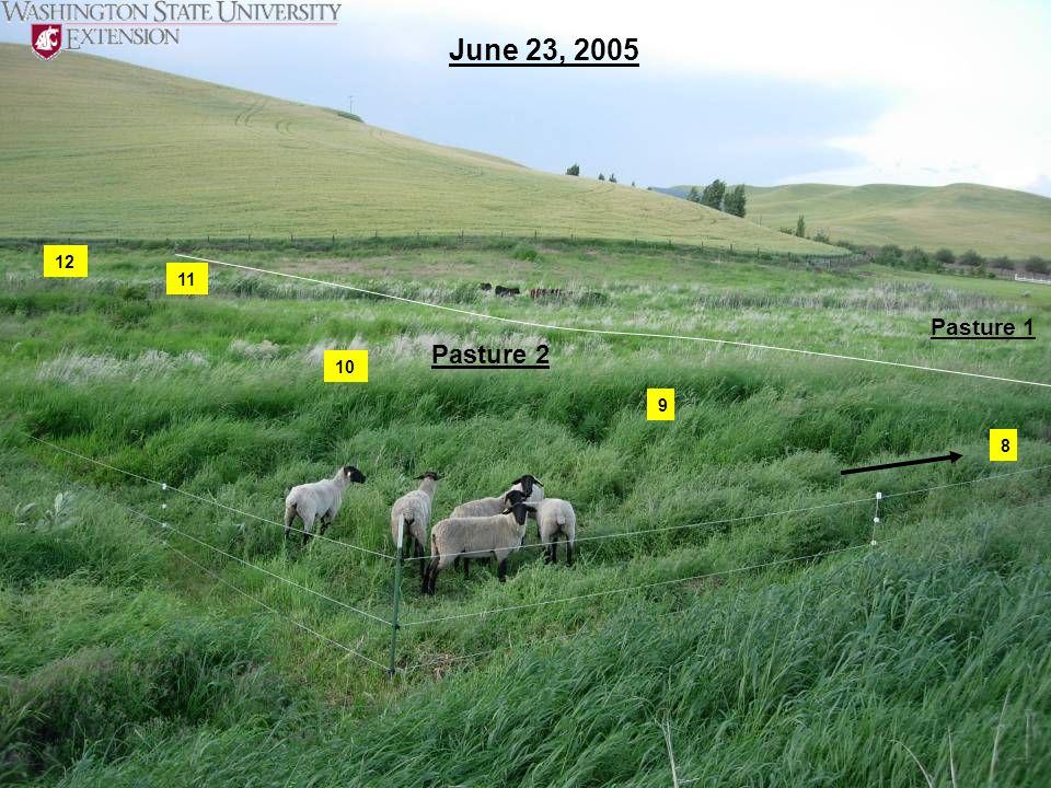 June 23, 2005 12 11 Pasture 1 Pasture 2 10 9 8