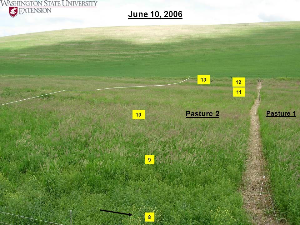 June 10, 2006 13 12 11 Pasture 2 Pasture 1 10 9 8