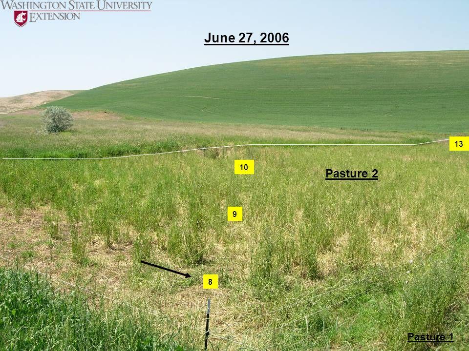 June 27, 2006 13 10 Pasture 2 9 8 Pasture 1