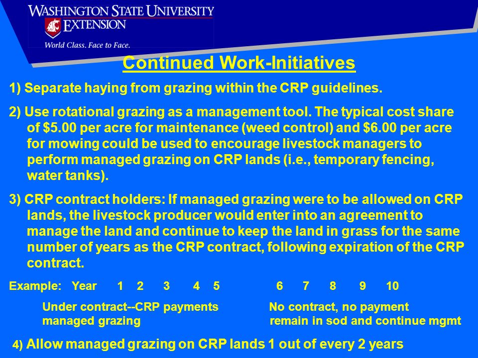 Continued Work-Initiatives
