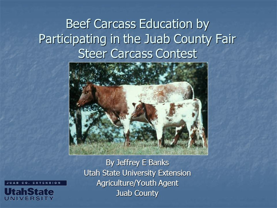Beef Carcass Education by Participating in the Juab County Fair Steer Carcass Contest