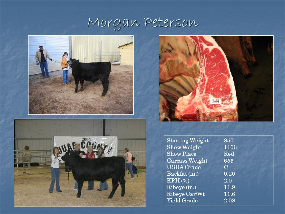 Morgan Peterson Starting Weight 850 Show Weight 1105 Show Place Red