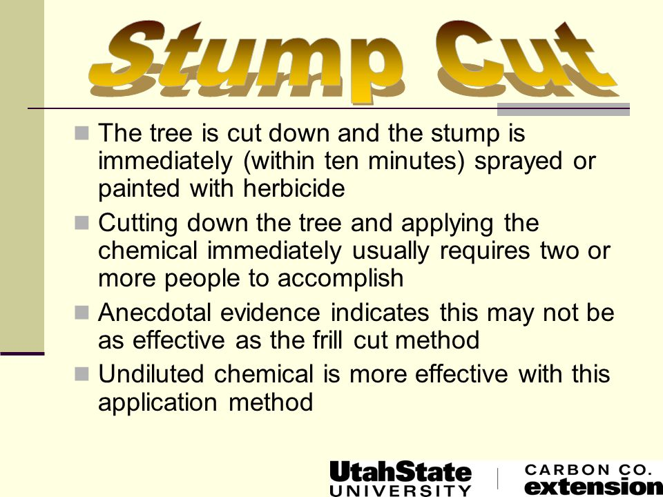 Stump Cut The tree is cut down and the stump is immediately (within ten minutes) sprayed or painted with herbicide.
