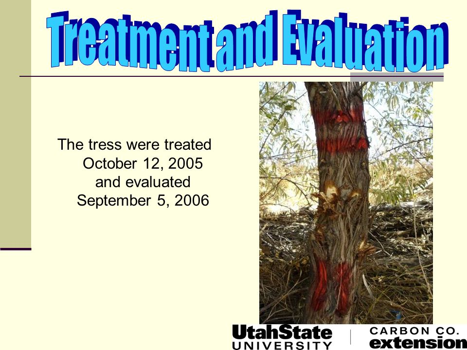 Treatment and Evaluation