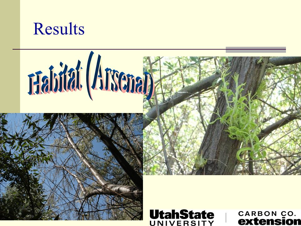 Results Habitat (Arsenal)