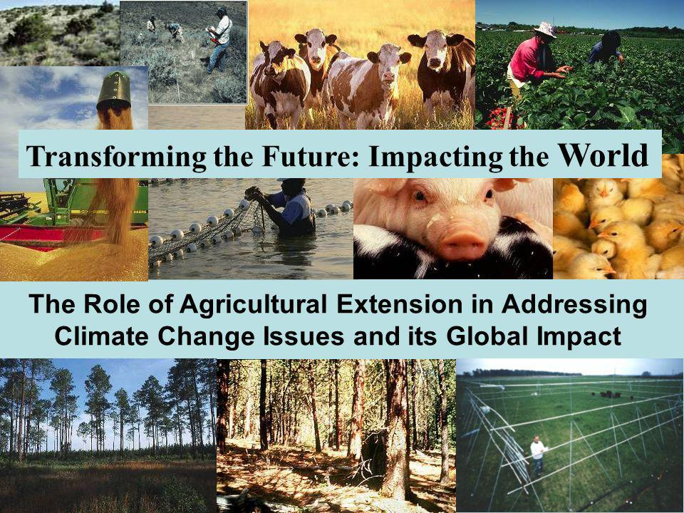 Transforming the Future: Impacting the World