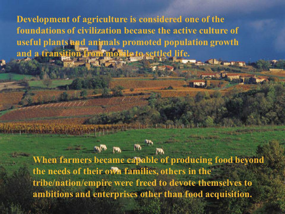 Development of agriculture is considered one of the foundations of civilization because the active culture of useful plants and animals promoted population growth and a transition from mobile to settled life.