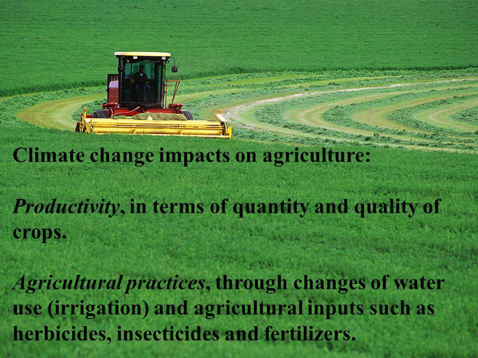 Climate change impacts on agriculture: