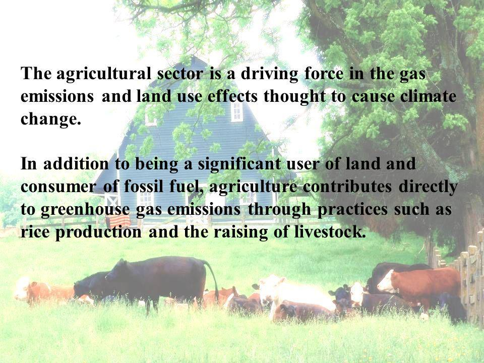 The agricultural sector is a driving force in the gas emissions and land use effects thought to cause climate change.