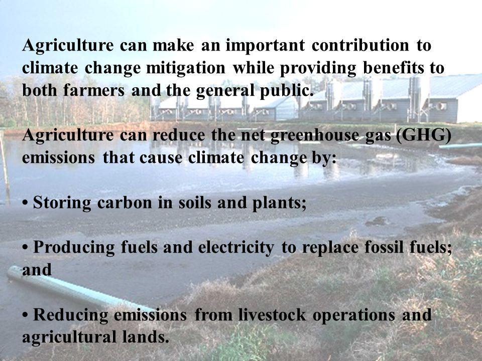 Agriculture can make an important contribution to climate change mitigation while providing benefits to both farmers and the general public.