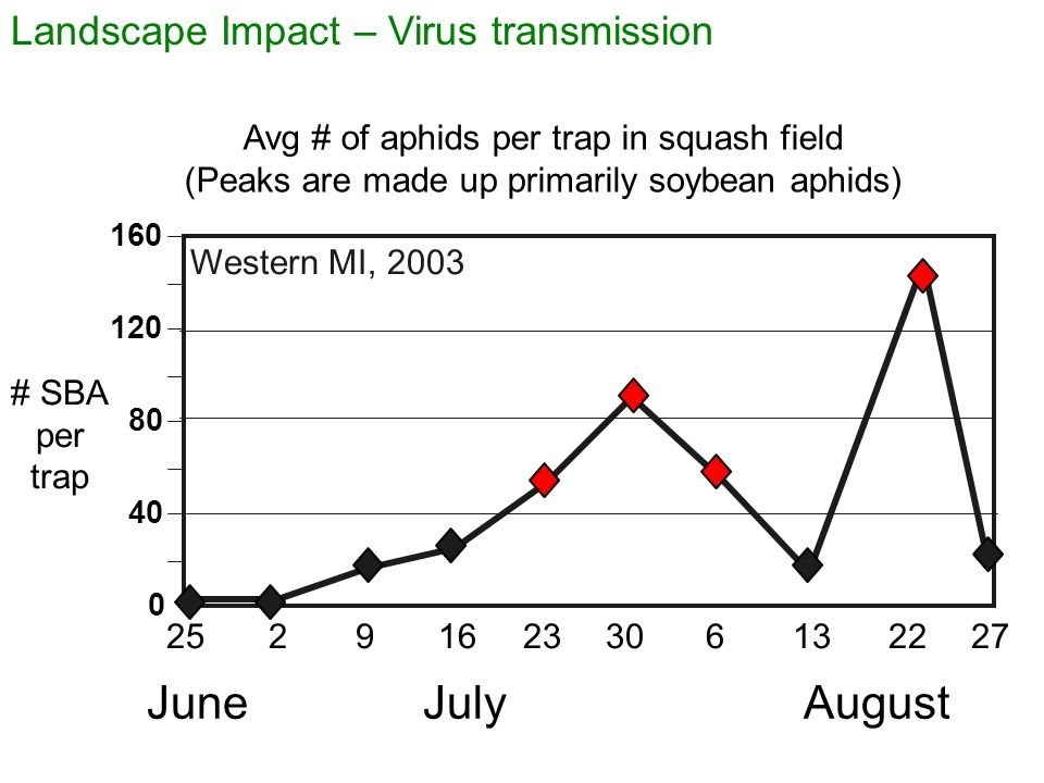 June July August Landscape Impact – Virus transmission