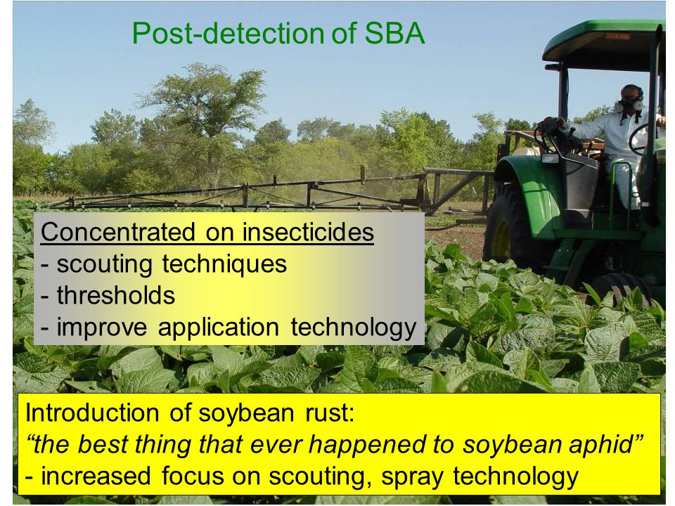 Post-detection of SBA Concentrated on insecticides scouting techniques