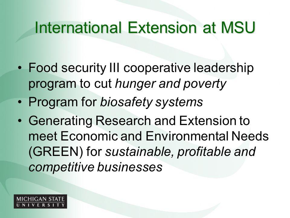 International Extension at MSU