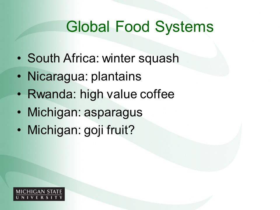 Global Food Systems South Africa: winter squash Nicaragua: plantains