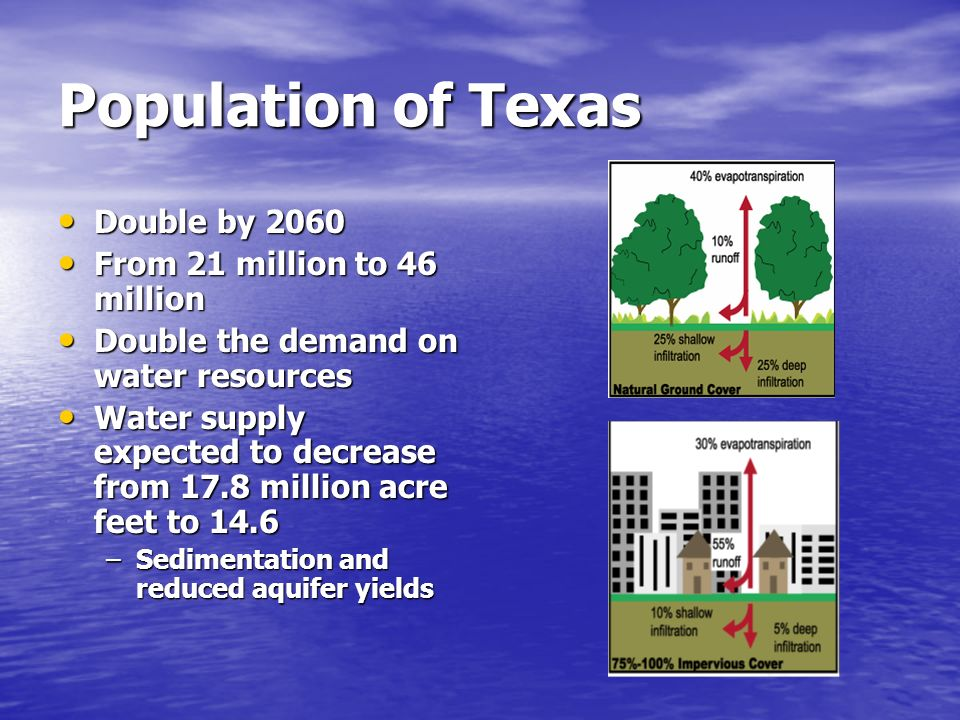 Population of Texas Double by 2060 From 21 million to 46 million