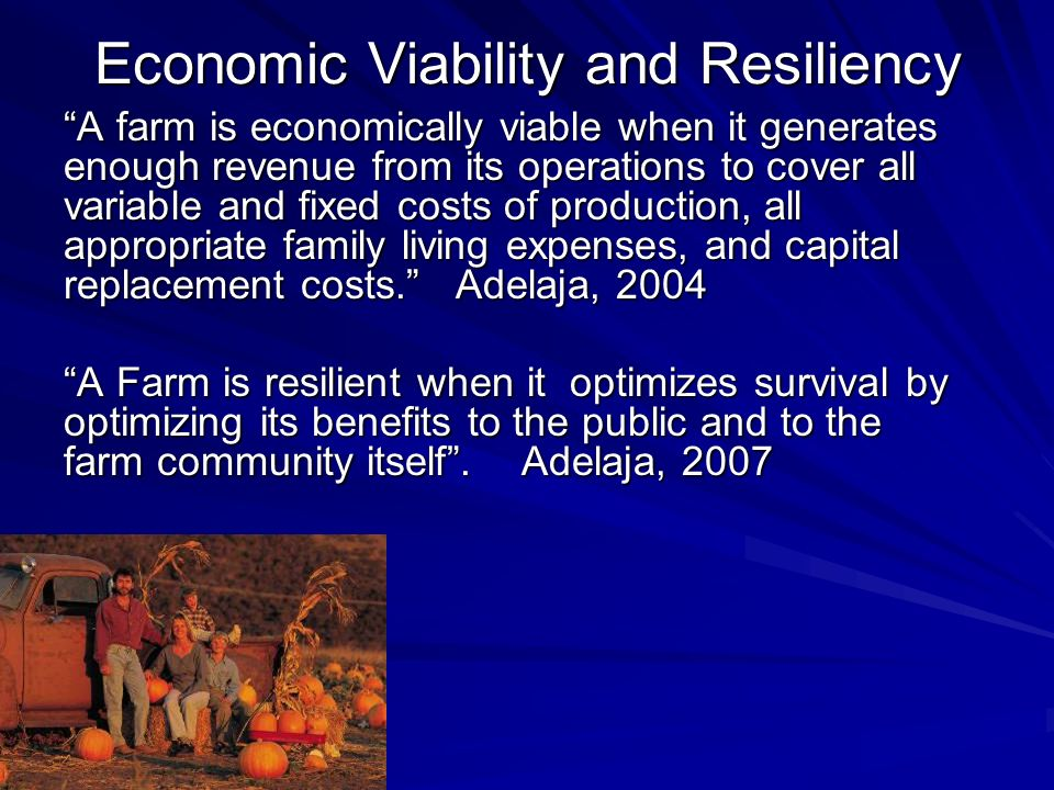 Economic Viability and Resiliency