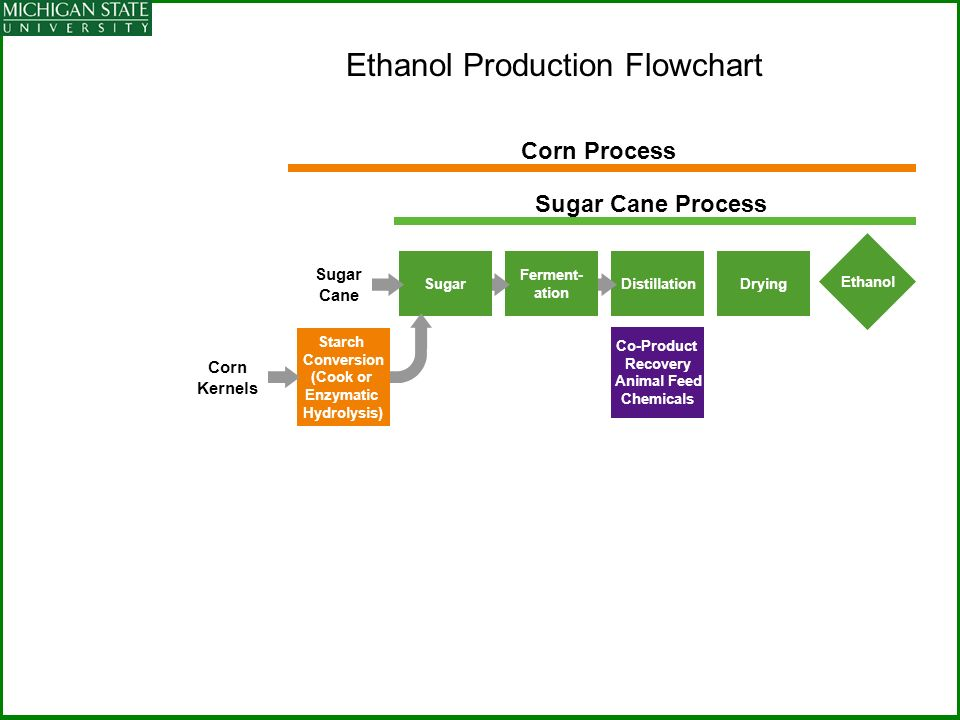 Ethanol Production Flowchart