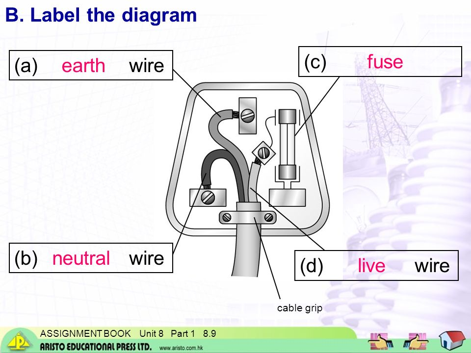 Wire Live Or Neutral K Grayengineeringeducation   Www.jzgreentown.com