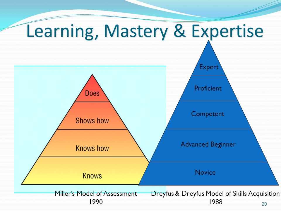 Learning, Mastery & Expertise