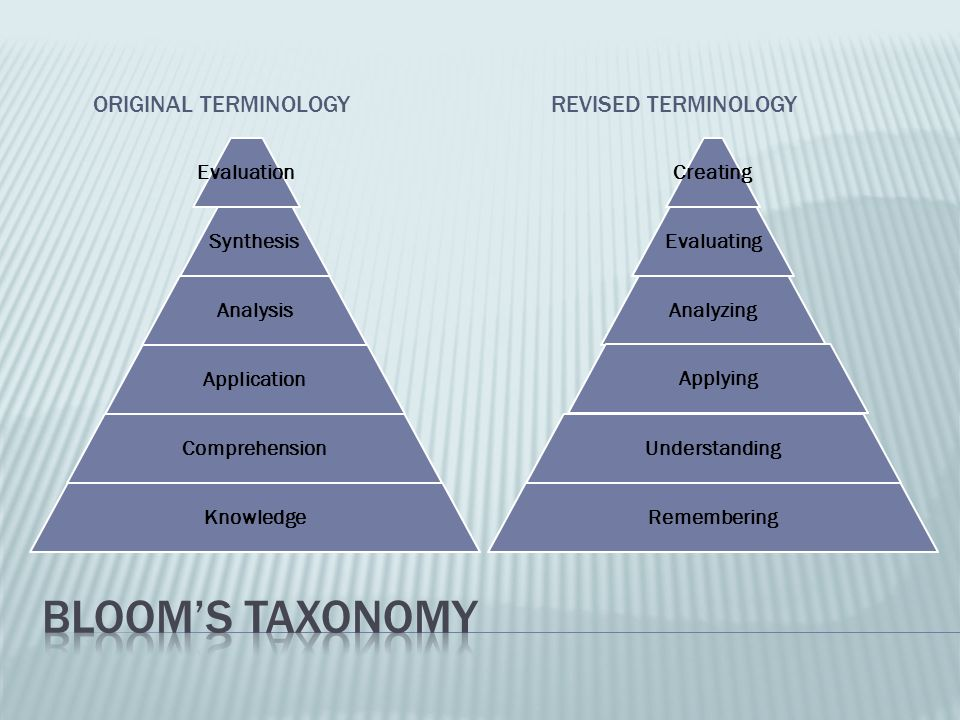 Bloom's Taxonomy Original Terminology Revised Terminology Evaluation