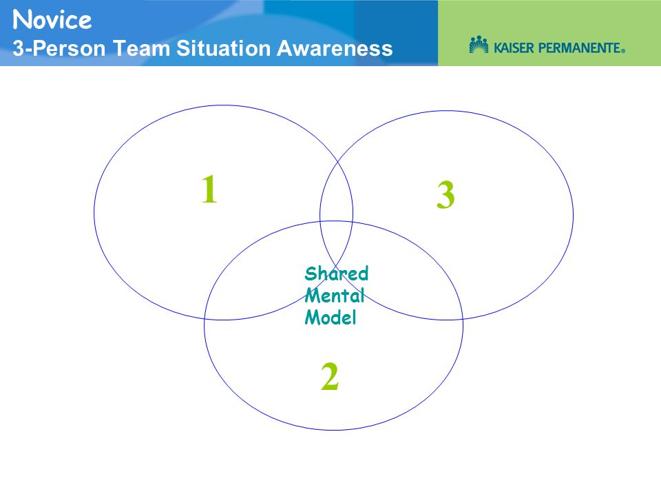 Novice 3-Person Team Situation Awareness