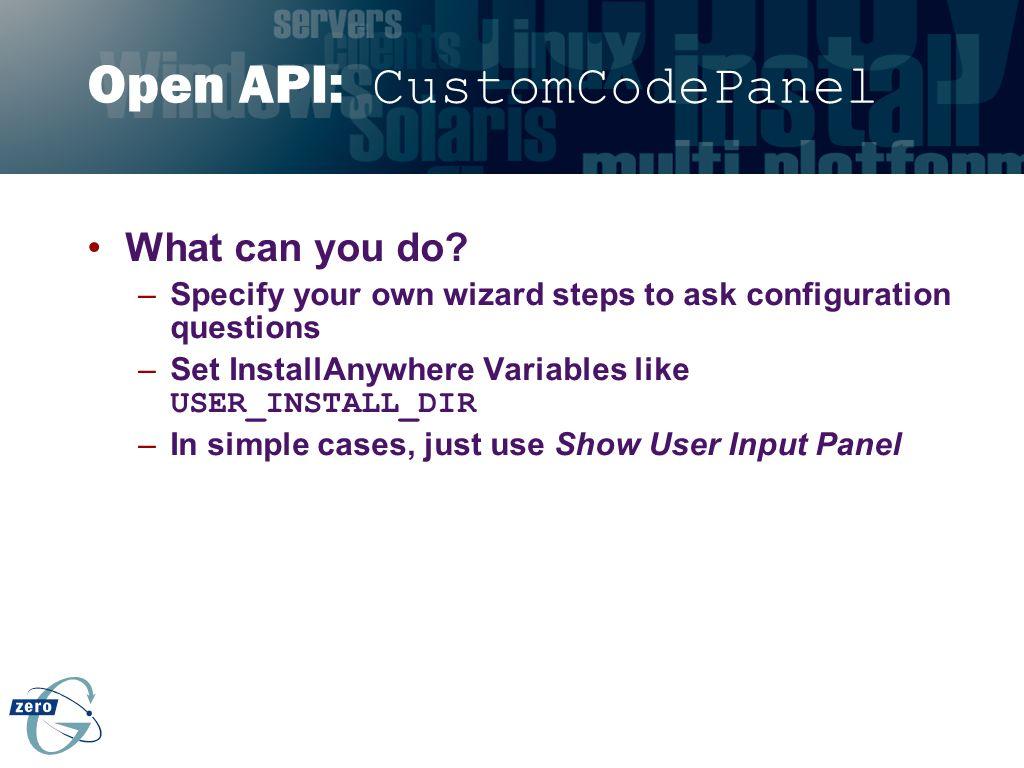 Open API: CustomCodePanel