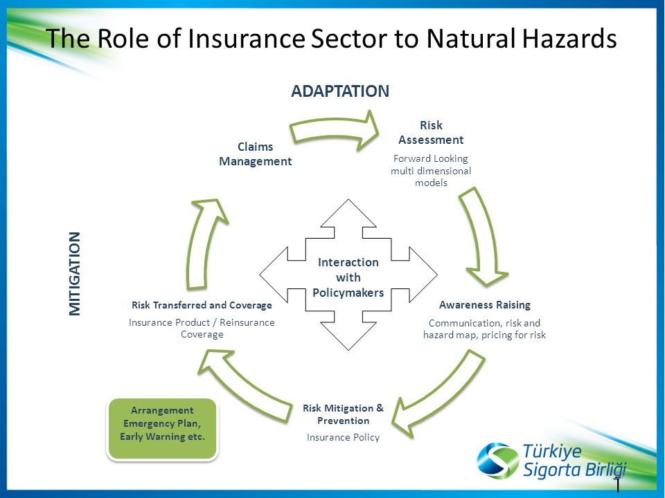 role of it in insurance sector In their role as institutional investors, insurance companiescontributetothedevelopmentofawell-functioning  get progressive insurance sector as well as progress in the.